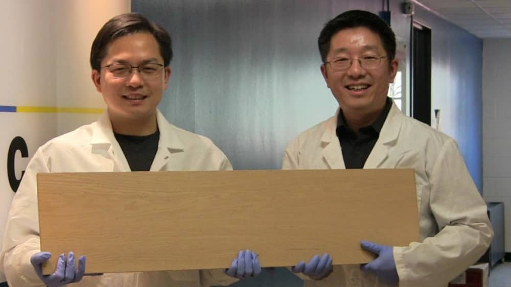 This superwood is ten times stronger than steel