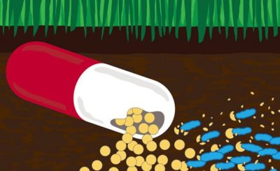 This novel study paves way to combat drug-resistant bacteria