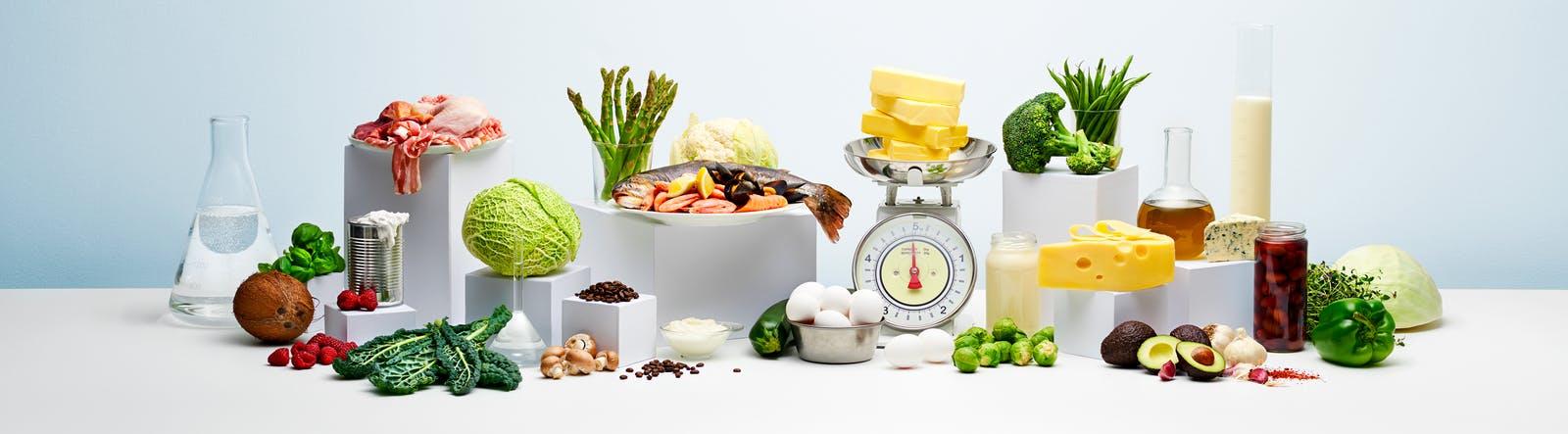 Keto diet linked to increased Type-2 Diabetes risk in mice