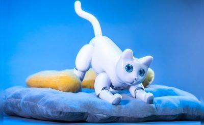 MarsCat Bionic Pet Cat kickstarter